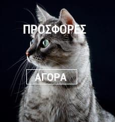 Μεγάλη ποικιλία σε είδη για τη γάτα σας
